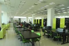 Area de Acervo, Lectura Informal, Lectura Formal, Consul (1)