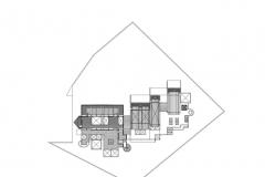 Bienal planta 2_001