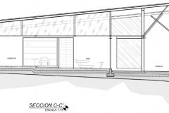Seccion C-C