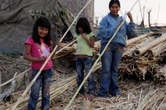 Construcción participativa de un Wawawasi con Quincha Modular .FOTO PUBLICACION 006