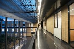 Edificio para la Licenciatura en Ciencia Forense. UNAM.002