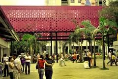 Intervencion Urbana cra 70 - Estadio (10)