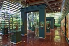 13. COPALITA HECTOR VELASCO - MUSEO