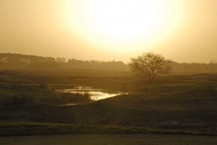 Sunset Creek H11