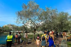 VISTA EXTERIOR 4 PUESTA EN VALOR DE LOS EQUIPAMIENTOS CULTURALES DEL BOSQUE EL OLIVAR DE SAN ISIDRO