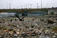 RIO VERDE 013