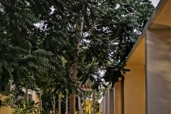 05-vivienda-multifamiliar-villas-paralelas_img_03